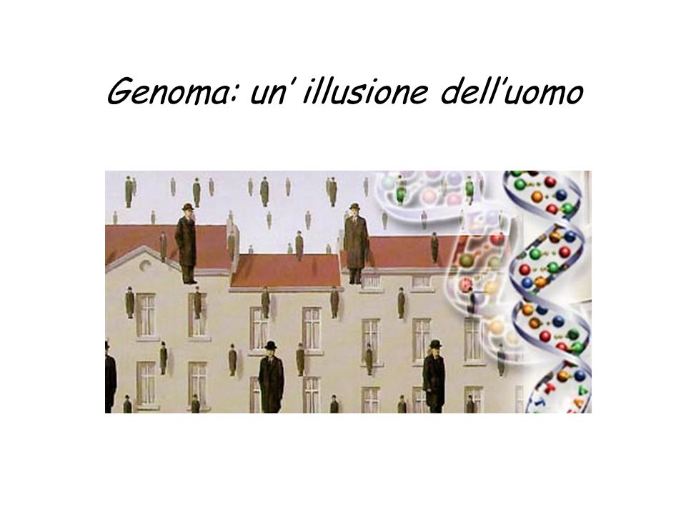 Genoma: un' illusione dell'uomo