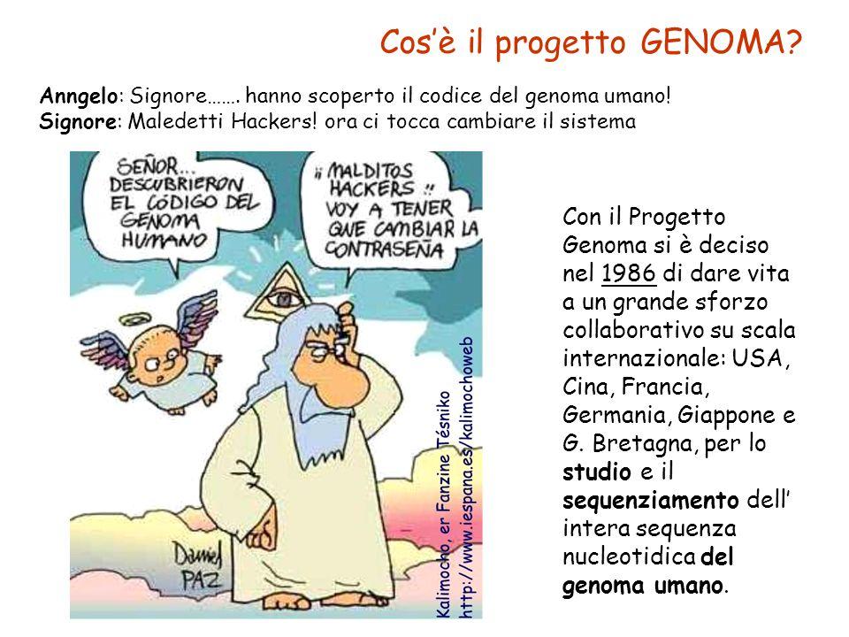 Cos'è il progetto GENOMA