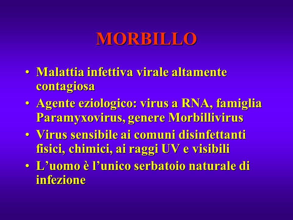 MORBILLO Malattia infettiva virale altamente contagiosa
