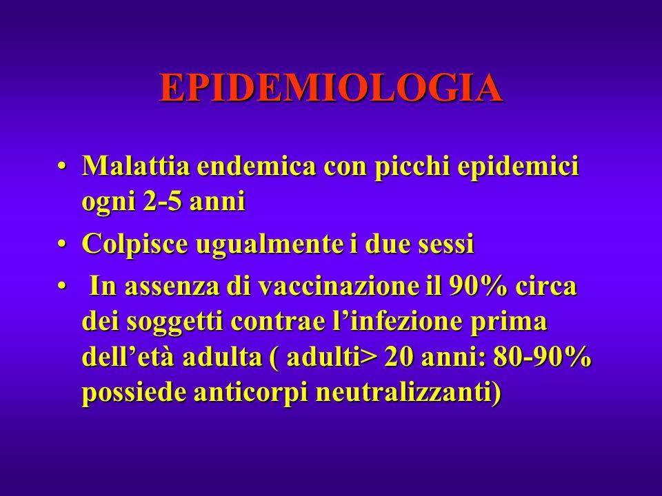 EPIDEMIOLOGIA Malattia endemica con picchi epidemici ogni 2-5 anni