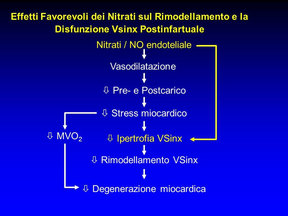 Nitrati / NO endoteliale