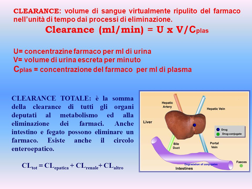 Clearance (ml/min) = U x V/Cplas CLtot = CLepatica + CLrenale+ CLaltro