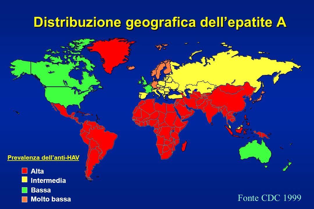 Distribuzione geografica dell'epatite A