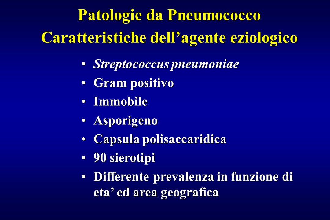 Patologie da Pneumococco Caratteristiche dell'agente eziologico