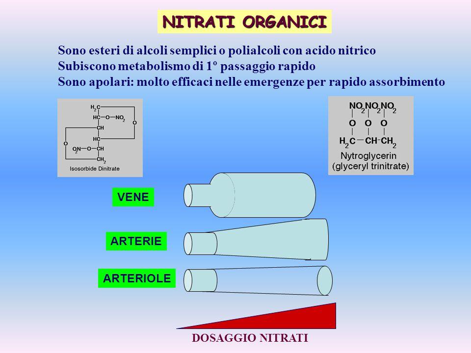 NITRATI ORGANICI Sono esteri di alcoli semplici o polialcoli con acido nitrico. Subiscono metabolismo di 1º passaggio rapido.