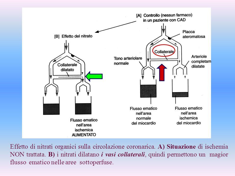 Effetto di nitrati organici sulla circolazione coronarica