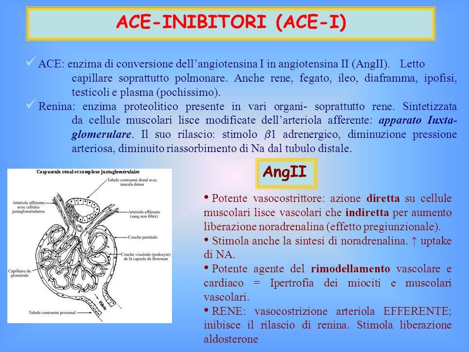 ACE-INIBITORI (ACE-I)