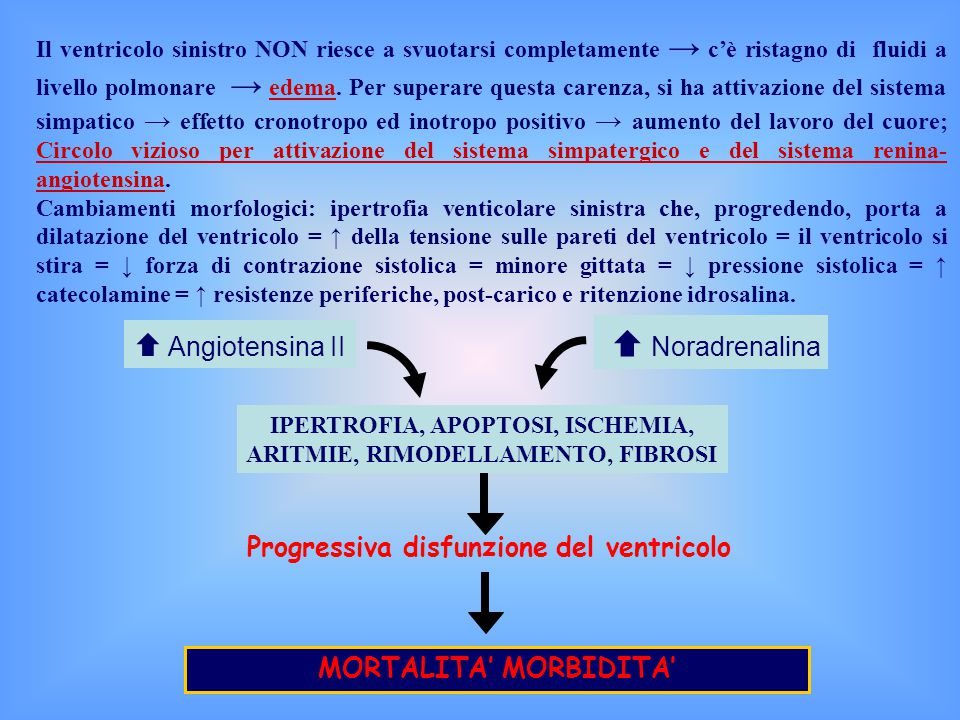  Angiotensina II Progressiva disfunzione del ventricolo