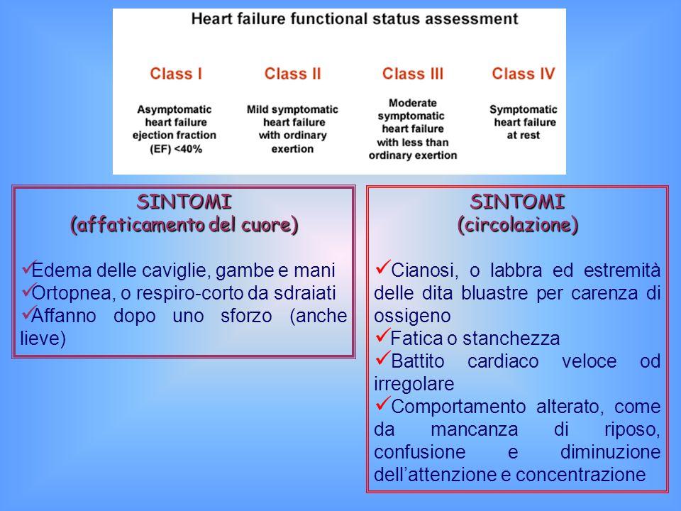 SINTOMI (affaticamento del cuore)