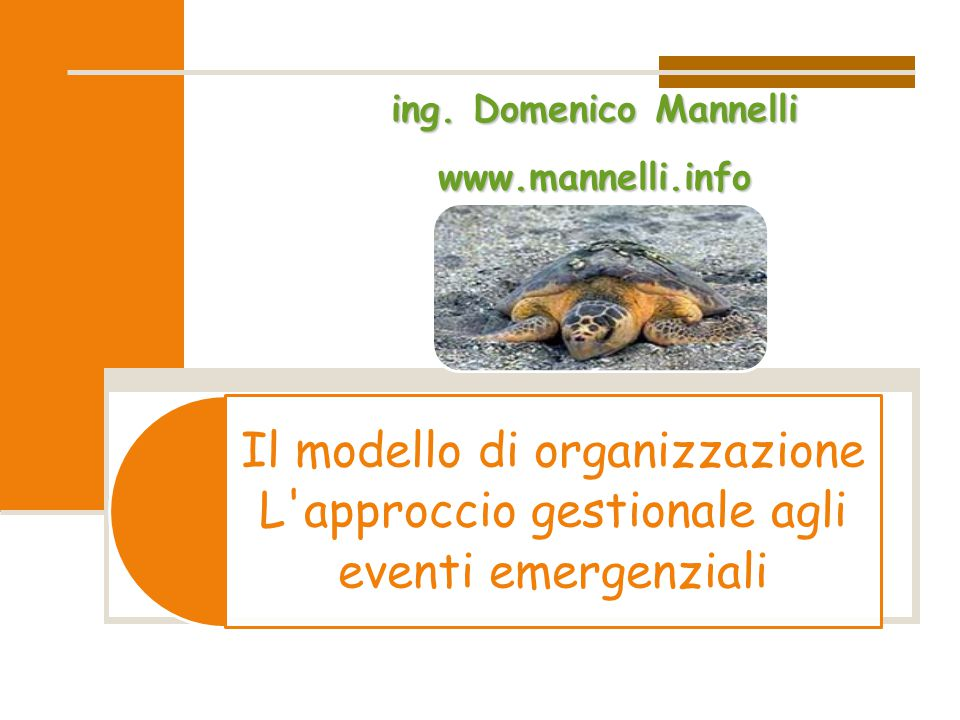 ing. Domenico Mannelli www.mannelli.info