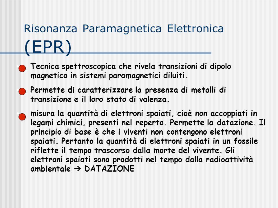 Risonanza Paramagnetica Elettronica (EPR)
