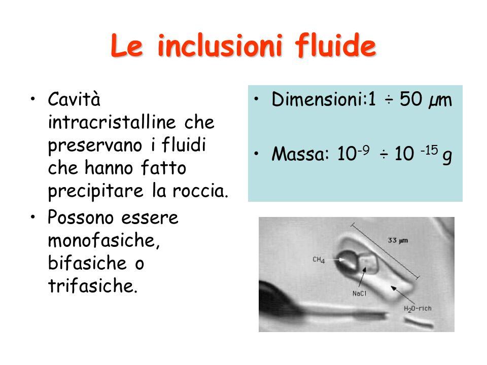 Le inclusioni fluide Cavità intracristalline che preservano i fluidi che hanno fatto precipitare la roccia.