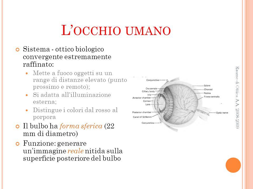 L'occhio umano Sistema - ottico biologico convergente estremamente raffinato: