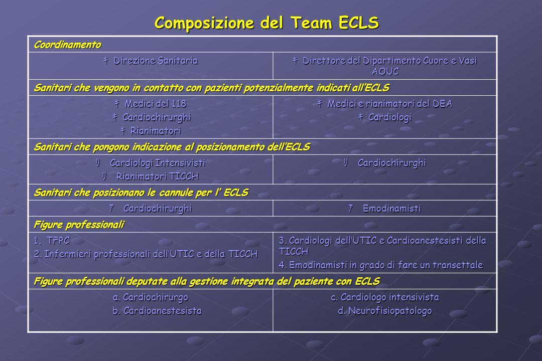 Composizione del Team ECLS