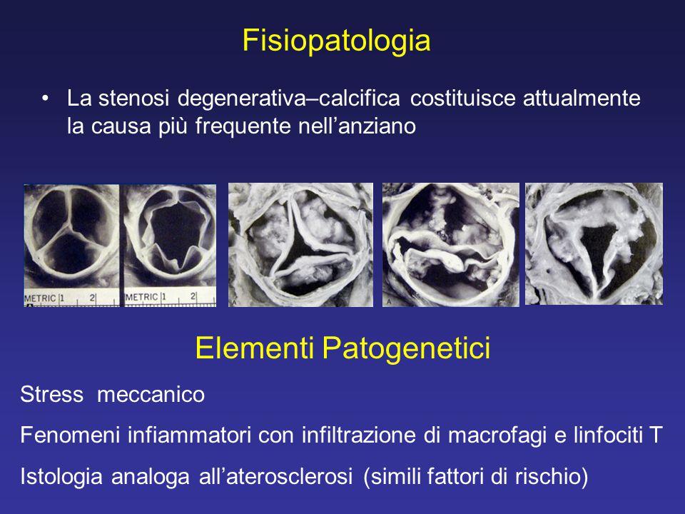Elementi Patogenetici