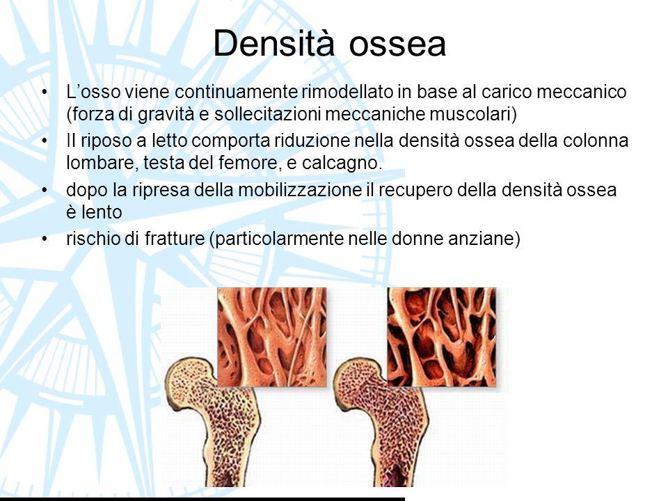 Densità ossea L'osso viene continuamente rimodellato in base al carico meccanico (forza di gravità e sollecitazioni meccaniche muscolari)