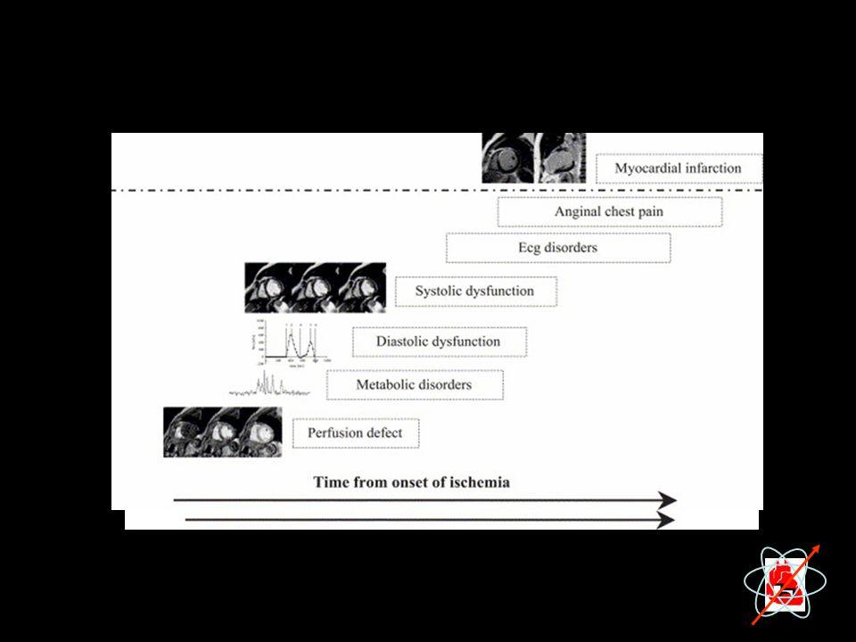 La RM cardiaca e'un metodica multiruolo che consente l'esplorazione della cascata ischemica dagli eventi piu' precoci, il deficit perusorio, alle alterazioni del metabolismo dei fosfati ad alta energia intracellulari con la spettroscopia del fosforo, alla identificazione della disfunzione diastolica con la valutazione della fase di rilasciamento precoce isovolumetrica mediante la valutazione delle velocita' di untwisting con il tagging e della fase di riempimento diastolica con la valutazione delle velocita' di flusso transmitralico con la VENC, allo studio della disunzione sistolica mediante la analisi della cinesi regionale. La RM consente inoltre di valutare i danni permanenti della lesione ischemica con la misura dell'area necrotica con il delay enhancement.
