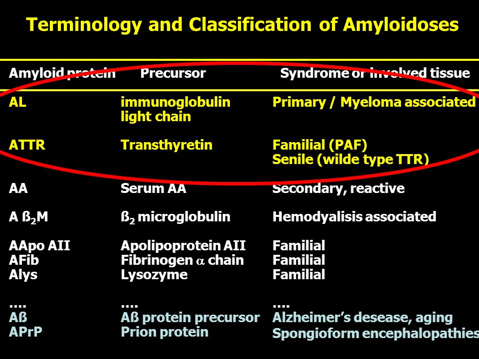 Terminology and Classification of Amyloidoses