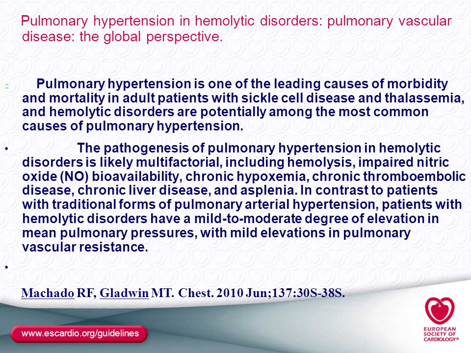 Pulmonary hypertension in hemolytic disorders: pulmonary vascular disease: the global perspective.