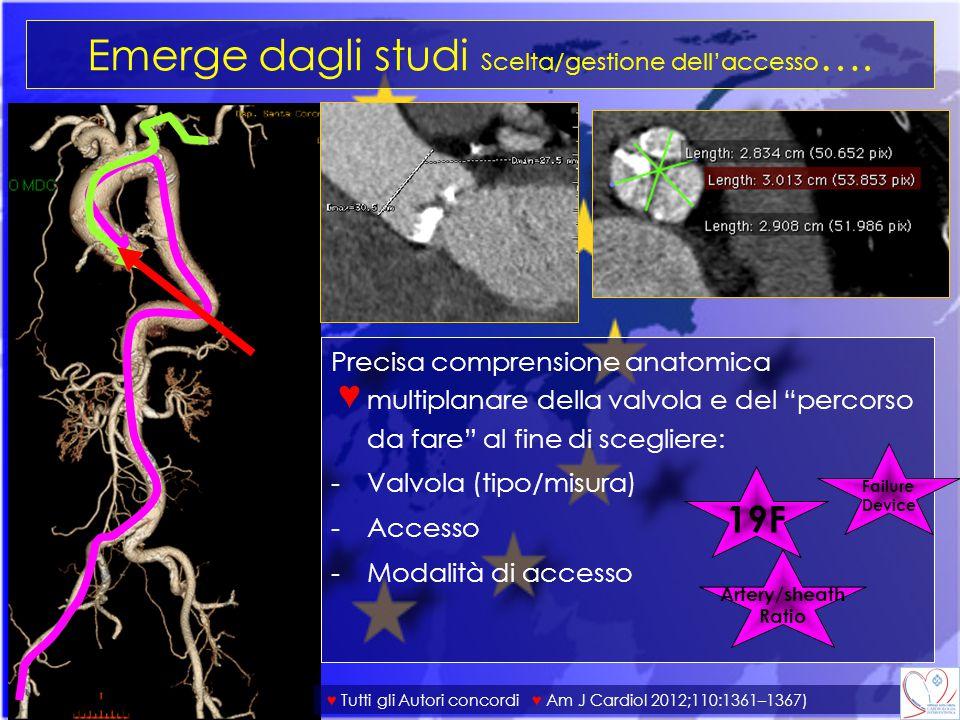 Emerge dagli studi Scelta/gestione dell'accesso….