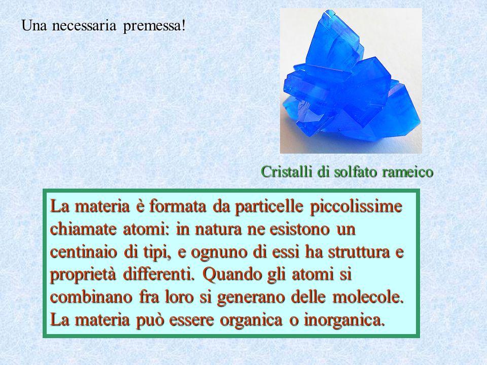 La materia può essere organica o inorganica.