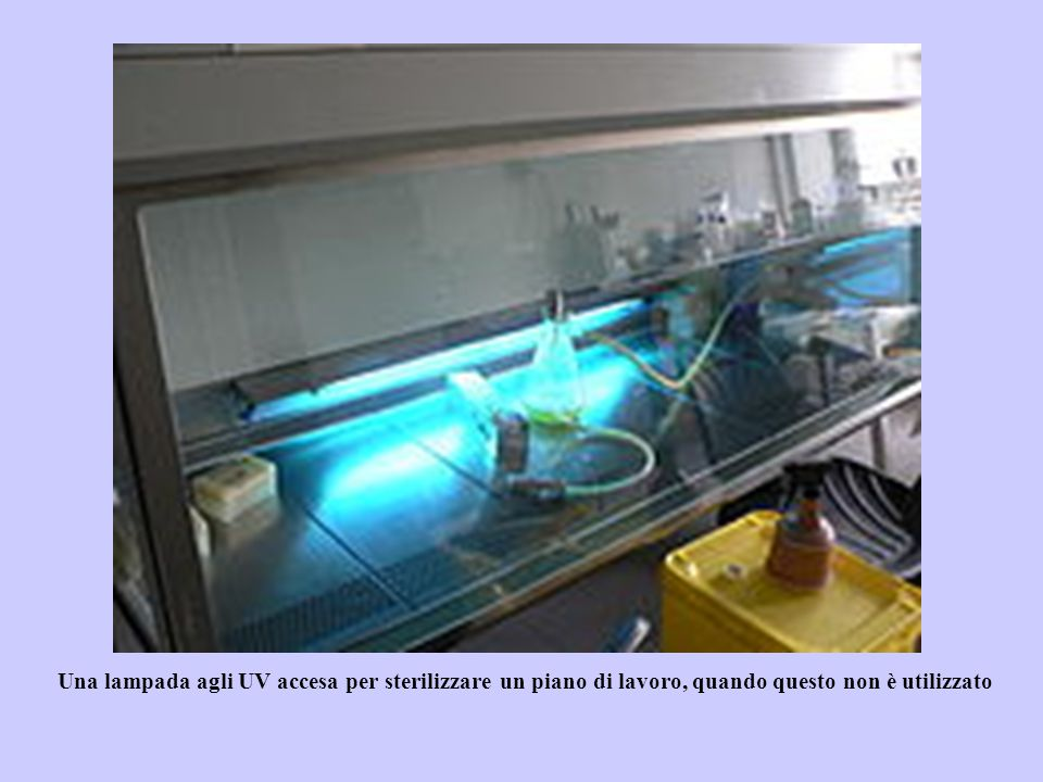 Una lampada agli UV accesa per sterilizzare un piano di lavoro, quando questo non è utilizzato