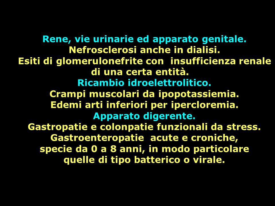 Rene, vie urinarie ed apparato genitale.
