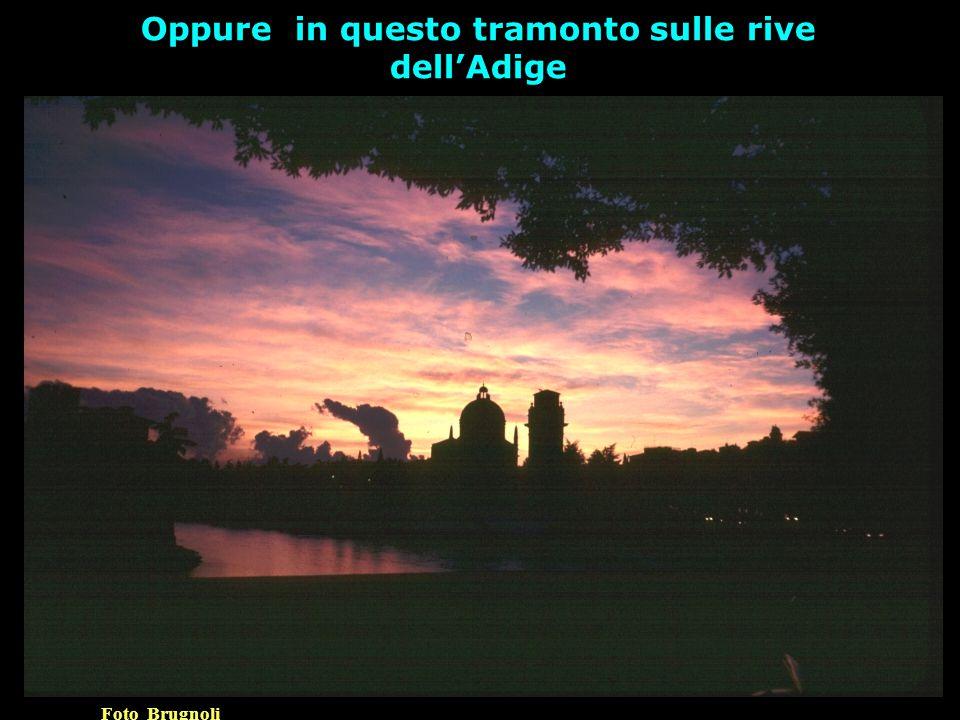 Oppure in questo tramonto sulle rive dell'Adige