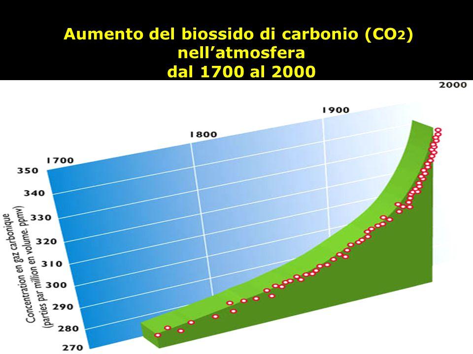 Aumento del biossido di carbonio (CO2)