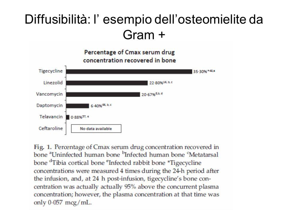 Diffusibilità: l' esempio dell'osteomielite da Gram +