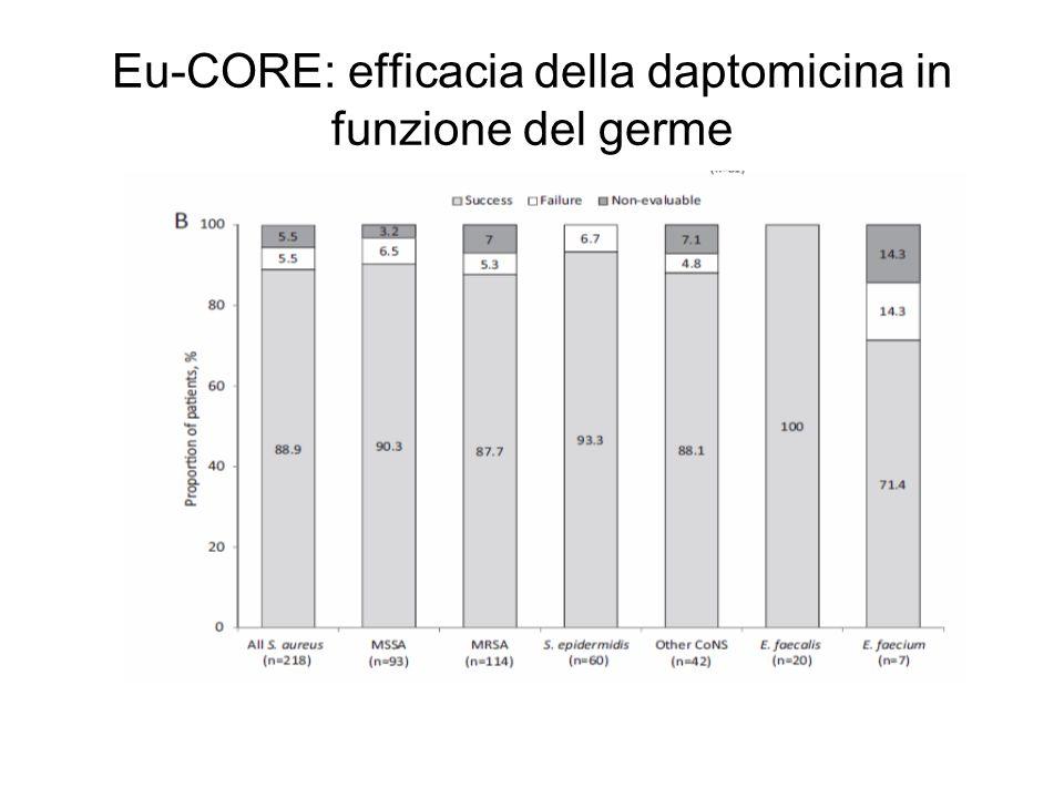 Eu-CORE: efficacia della daptomicina in funzione del germe