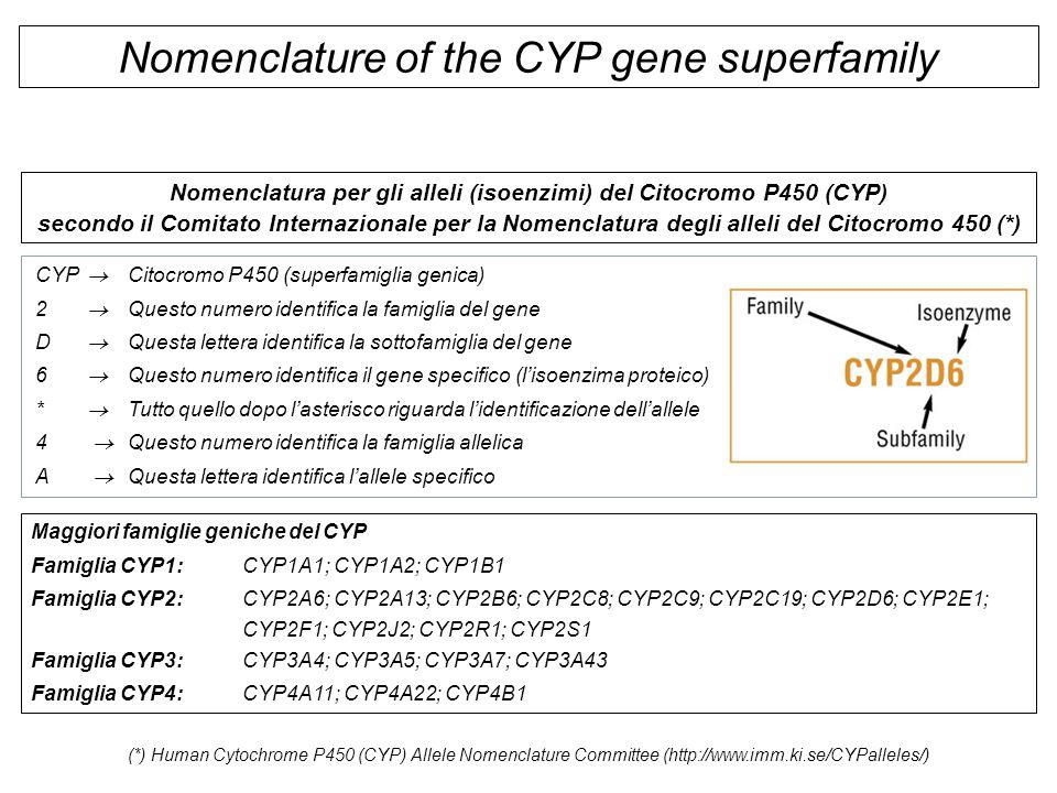 Nomenclatura per gli alleli (isoenzimi) del Citocromo P450 (CYP)