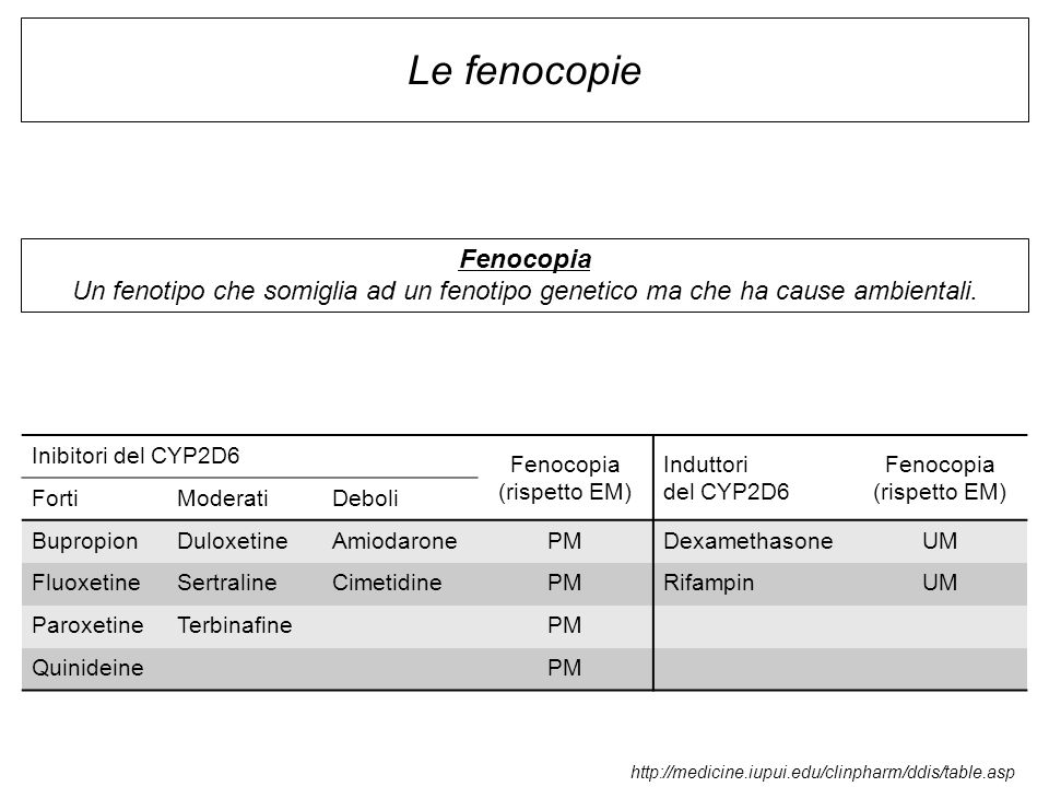 Le fenocopie Fenocopia