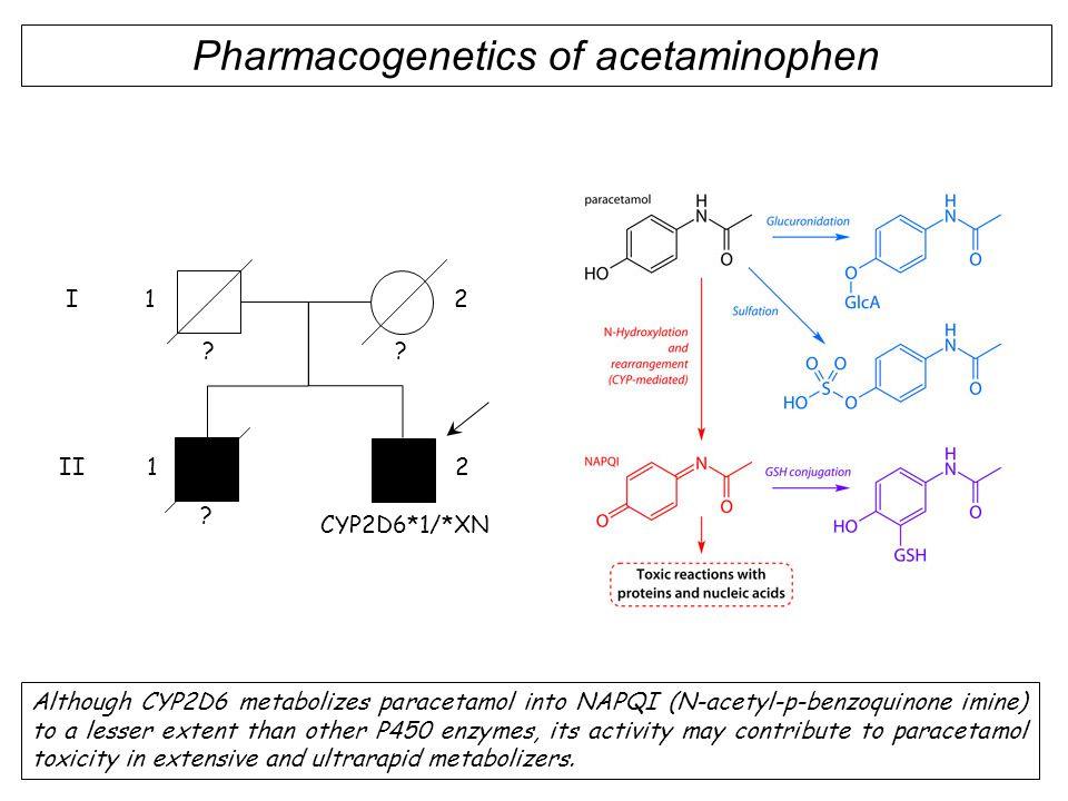Pharmacogenetics of acetaminophen