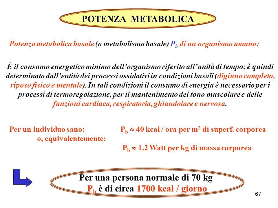 Per una persona normale di 70 kg Pb è di circa 1700 kcal / giorno