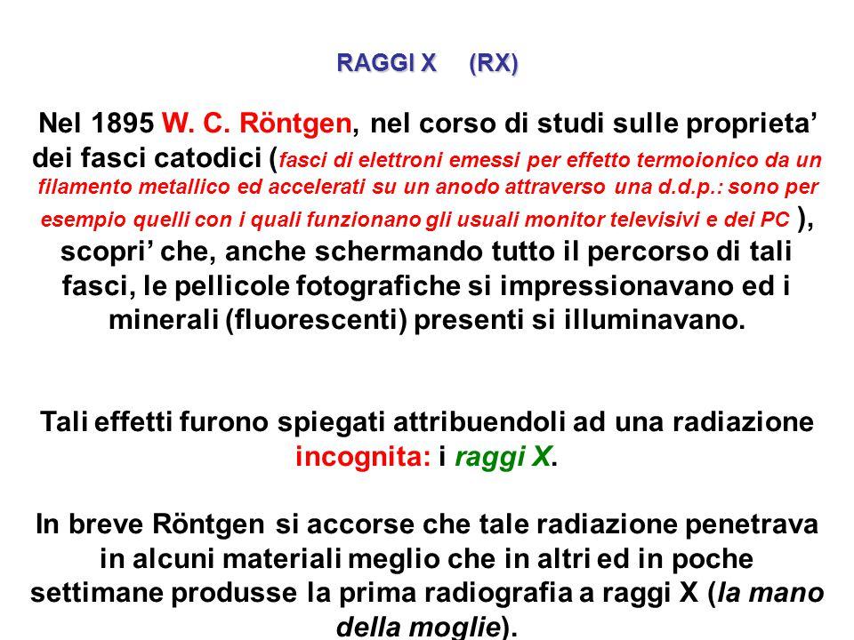 RAGGI X (RX)