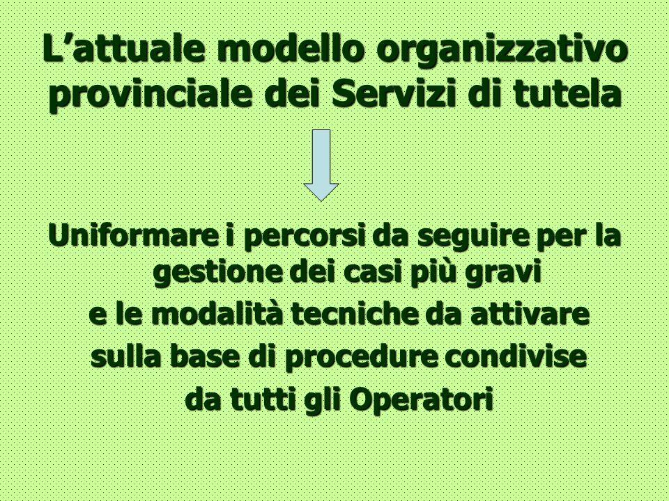 L'attuale modello organizzativo provinciale dei Servizi di tutela