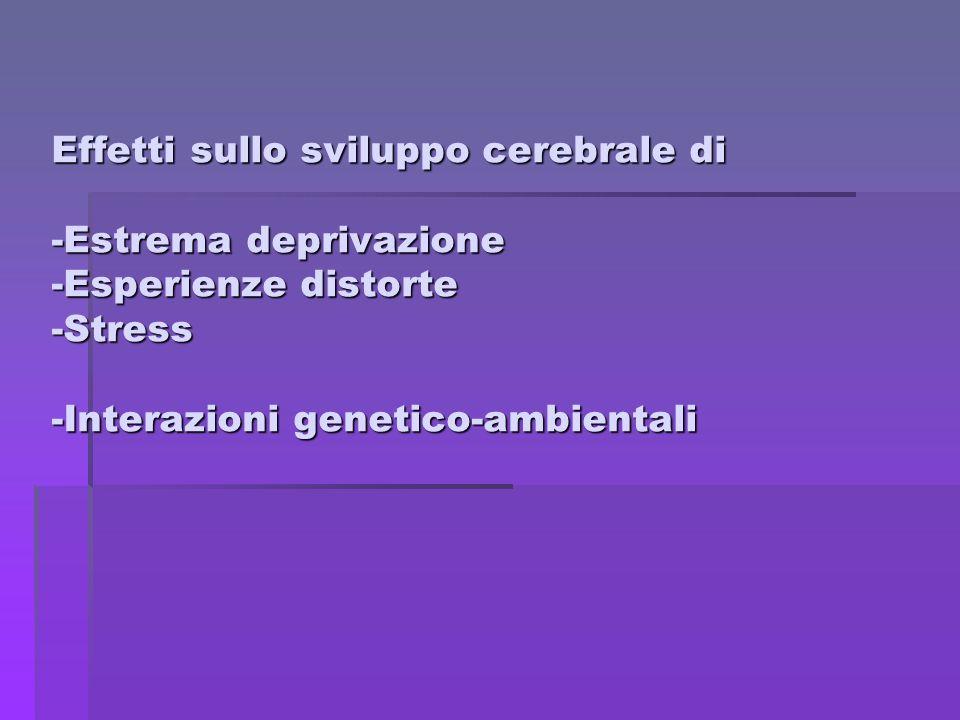 Effetti sullo sviluppo cerebrale di -Estrema deprivazione -Esperienze distorte -Stress -Interazioni genetico-ambientali