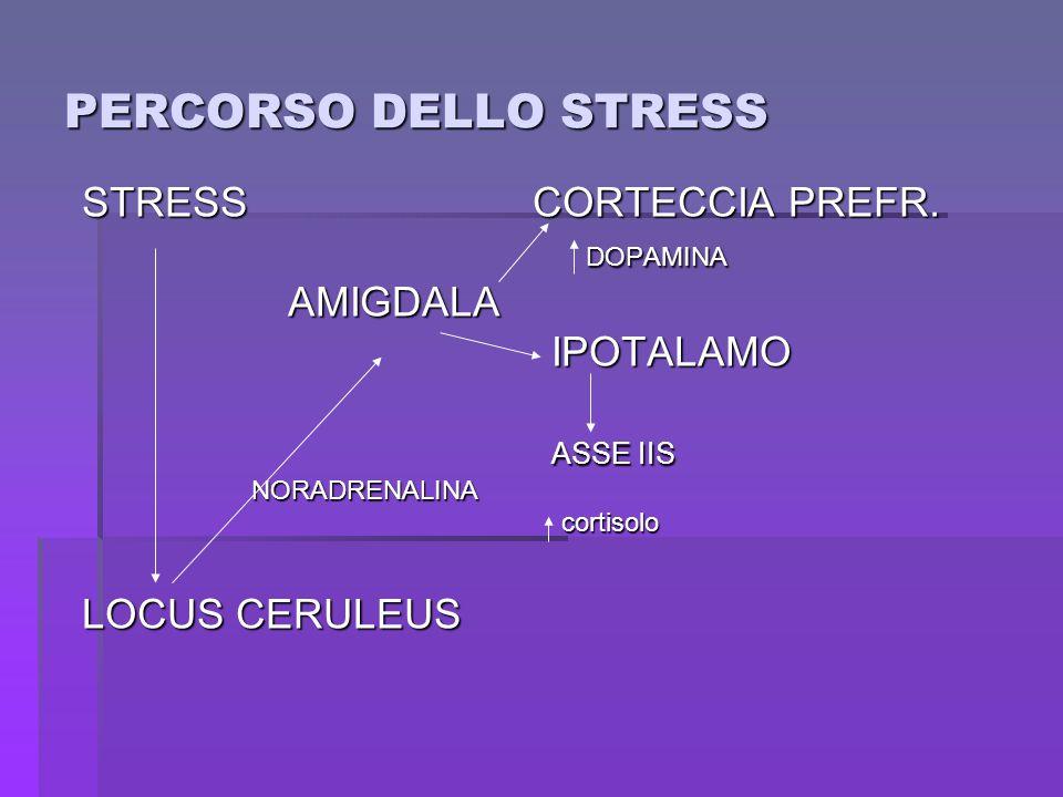PERCORSO DELLO STRESS STRESS CORTECCIA PREFR. DOPAMINA AMIGDALA