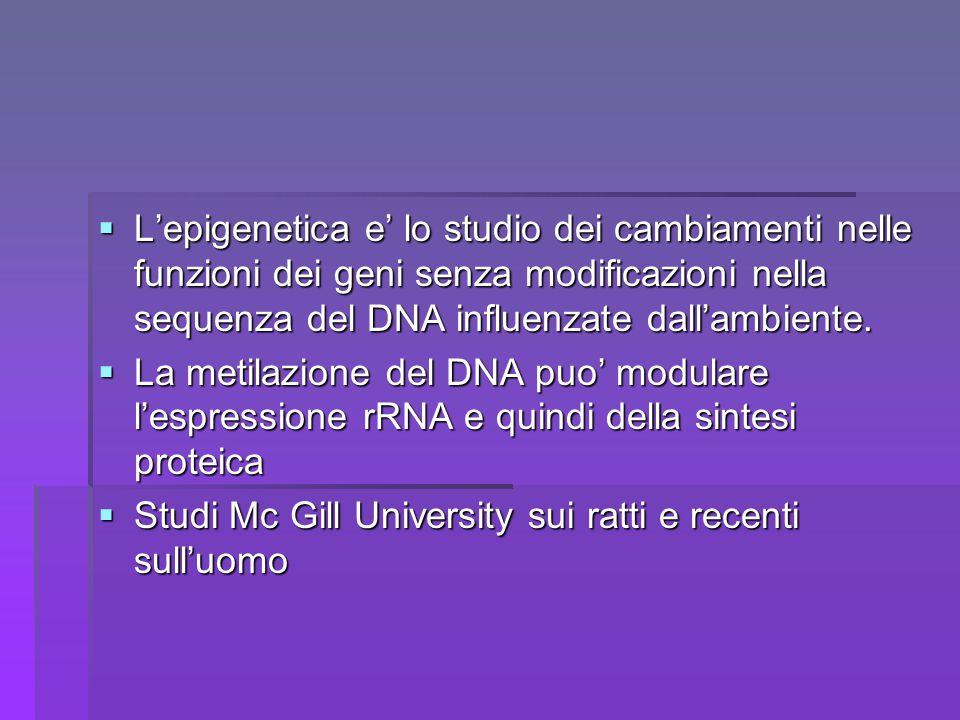 L'epigenetica e' lo studio dei cambiamenti nelle funzioni dei geni senza modificazioni nella sequenza del DNA influenzate dall'ambiente.