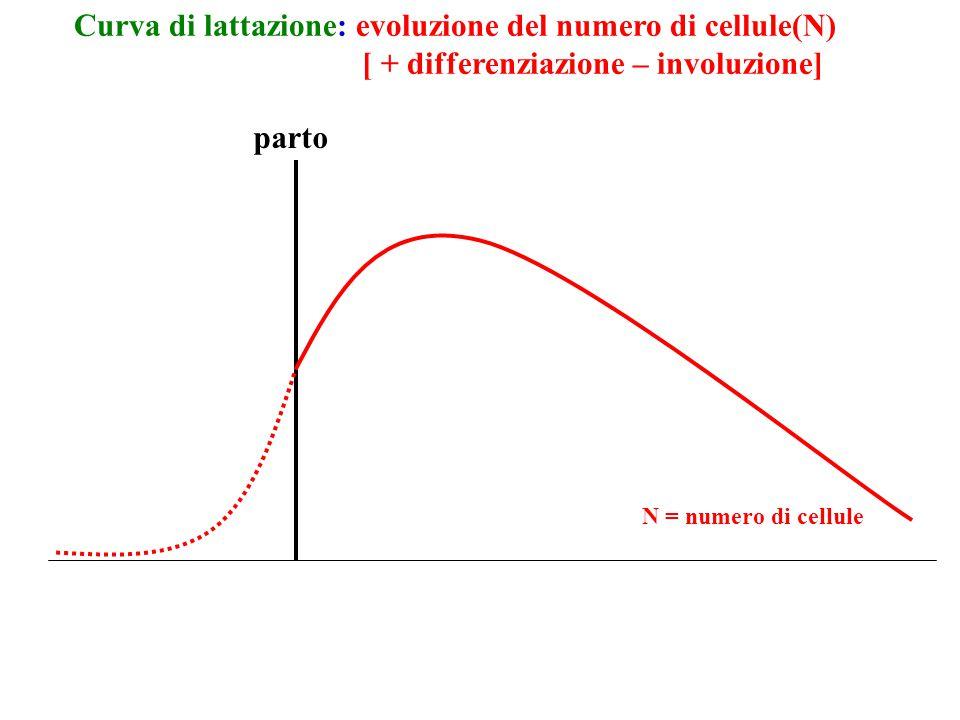Curva di lattazione: evoluzione del numero di cellule(N)