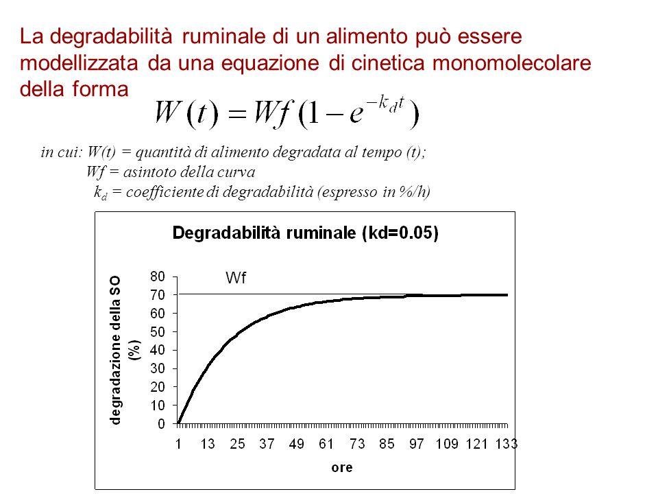 La degradabilità ruminale di un alimento può essere modellizzata da una equazione di cinetica monomolecolare della forma