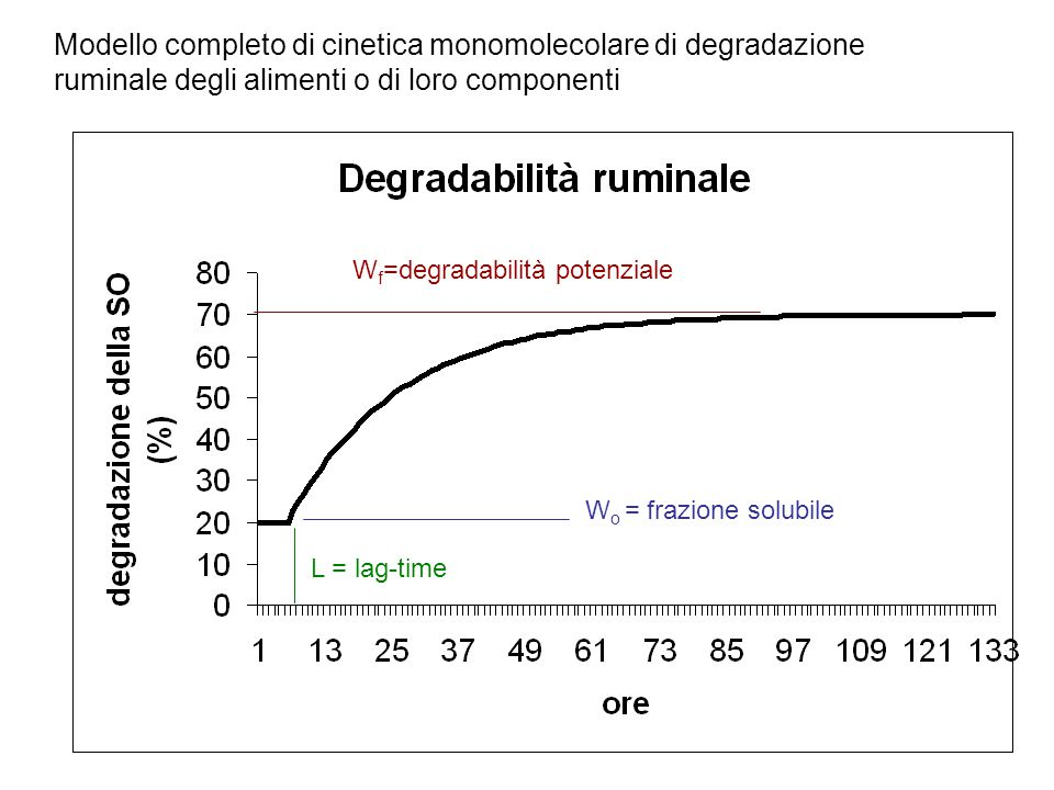 Modello completo di cinetica monomolecolare di degradazione ruminale degli alimenti o di loro componenti