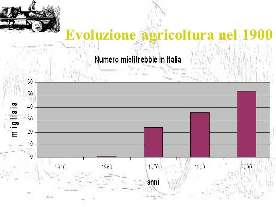 Evoluzione agricoltura nel 1900