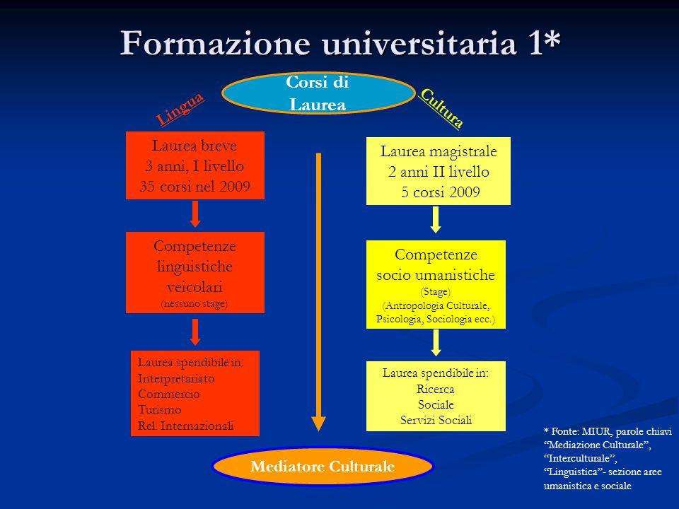Formazione universitaria 1*