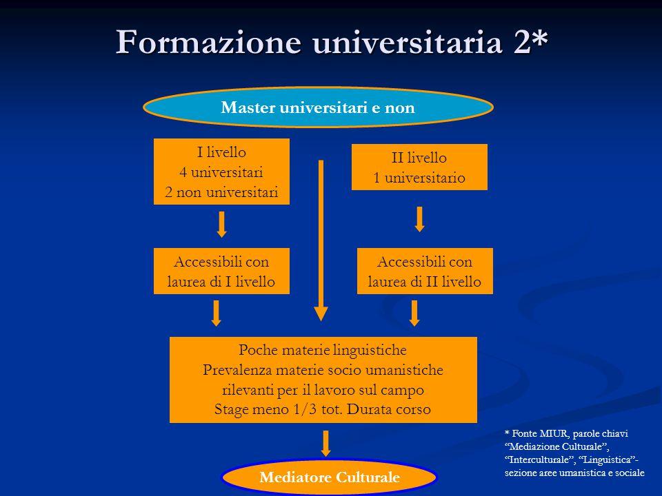 Formazione universitaria 2*