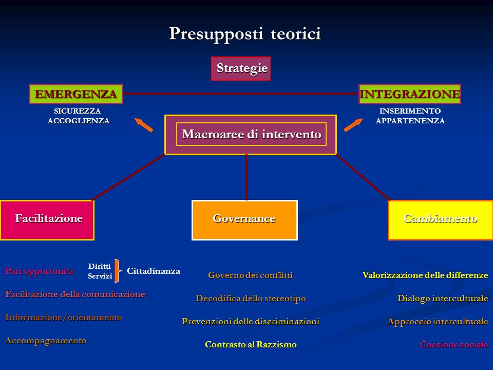 Presupposti teorici Strategie Macroaree di intervento EMERGENZA