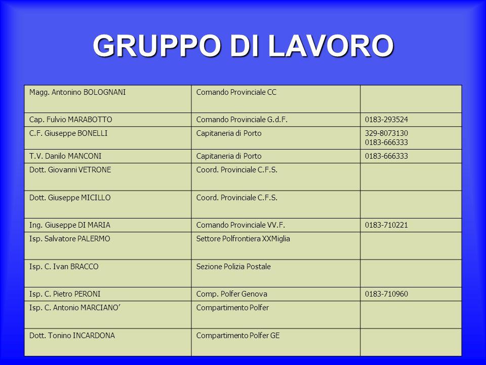 GRUPPO DI LAVORO Magg. Antonino BOLOGNANI Comando Provinciale CC