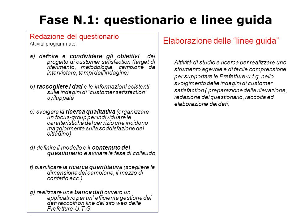 Fase N.1: questionario e linee guida