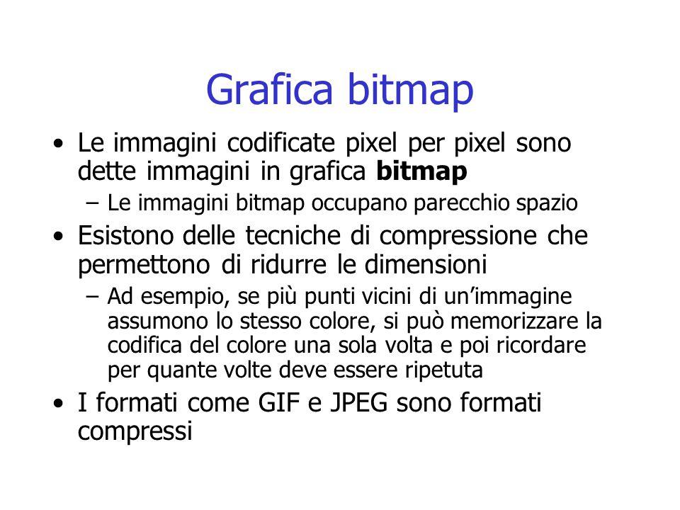Grafica bitmap Le immagini codificate pixel per pixel sono dette immagini in grafica bitmap. Le immagini bitmap occupano parecchio spazio.